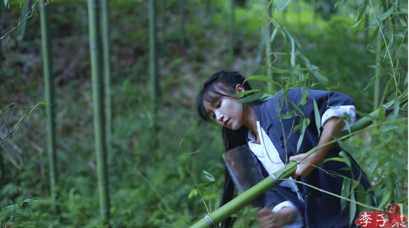 大自然與傳統文化物品紀錄片-Youtober『李子柒』